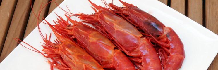 Especialistas en marisco congelado en Malaga