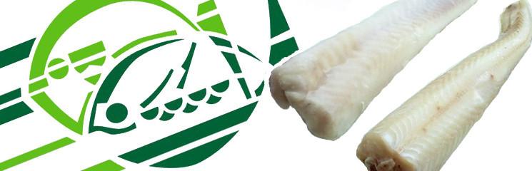 Elaboración de Congelados: Filete de Rosada